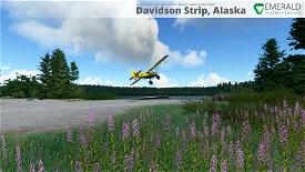 Davidson Strip, Alaska (45AA) Microsoft Flight Simulator