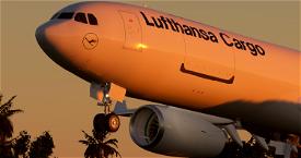 Lufthansa Cargo New Livery   PMP a330-300F [8K] Image Flight Simulator 2020