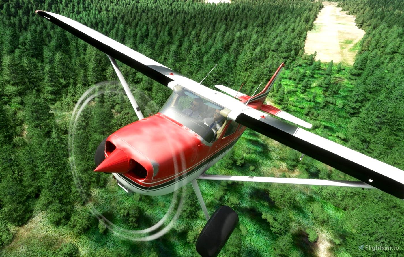 C172 Taildragger N1951S Flight Simulator 2020