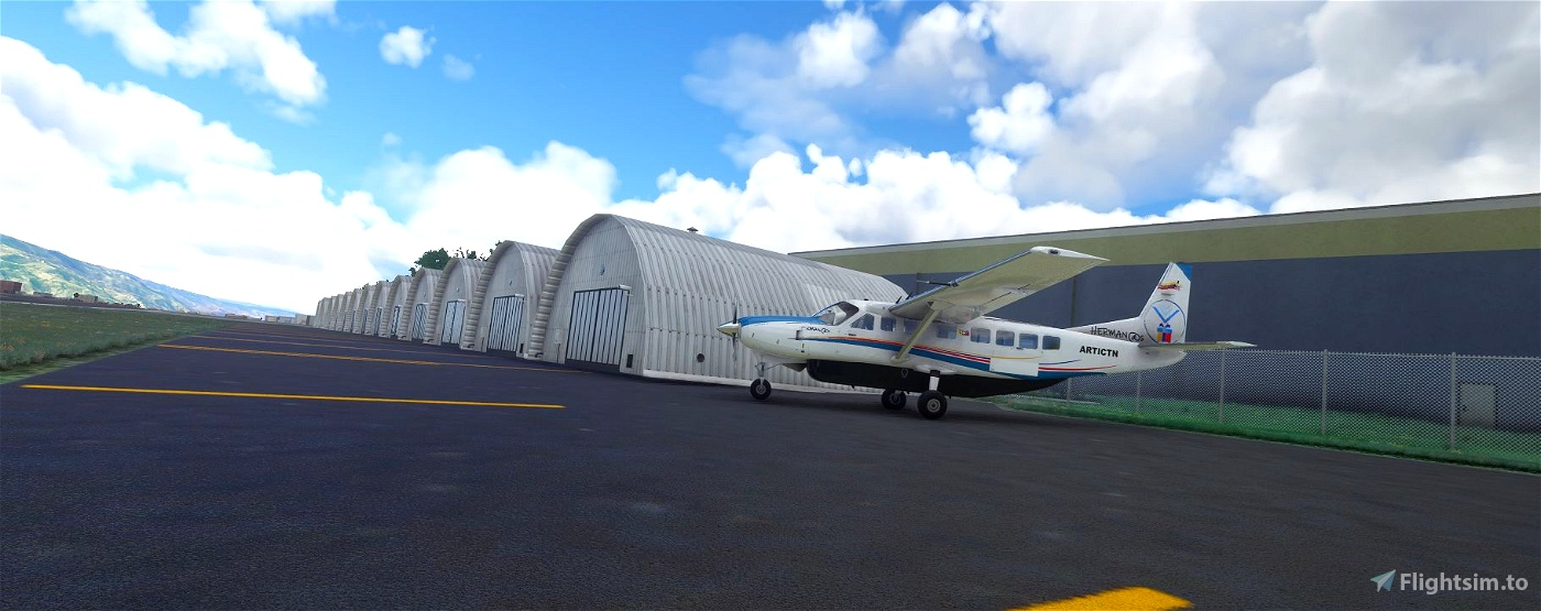 SVMD - Alberto Carnevalli  Microsoft Flight Simulator