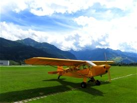 Savage Cub D-MTUN Microsoft Flight Simulator