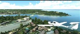 Tree Height Modification VERSION 3.0 for MFS2020 (shorter, realistic trees)  Microsoft Flight Simulator