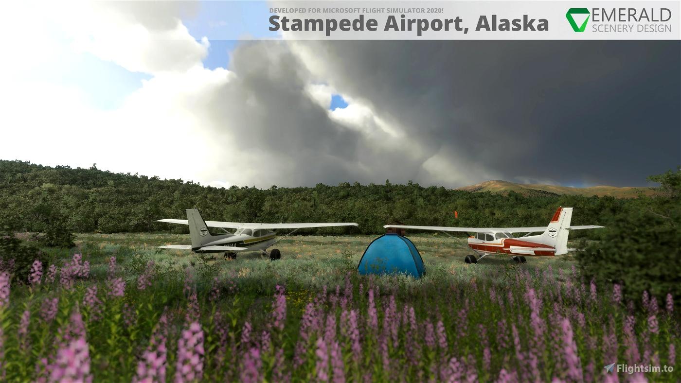 Stampede Airport, Alaska (Z90) Microsoft Flight Simulator