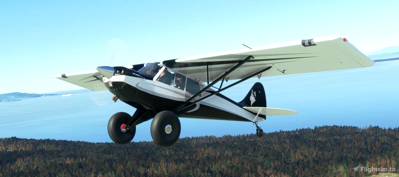 AIRPAC1 HUSKY A1C ANNIVERSARY EDITION Livery Microsoft Flight Simulator