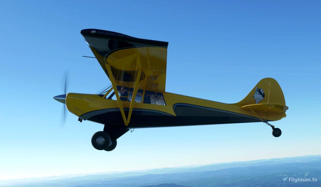 AIRPAC1 HUSKY A1C VECTOR