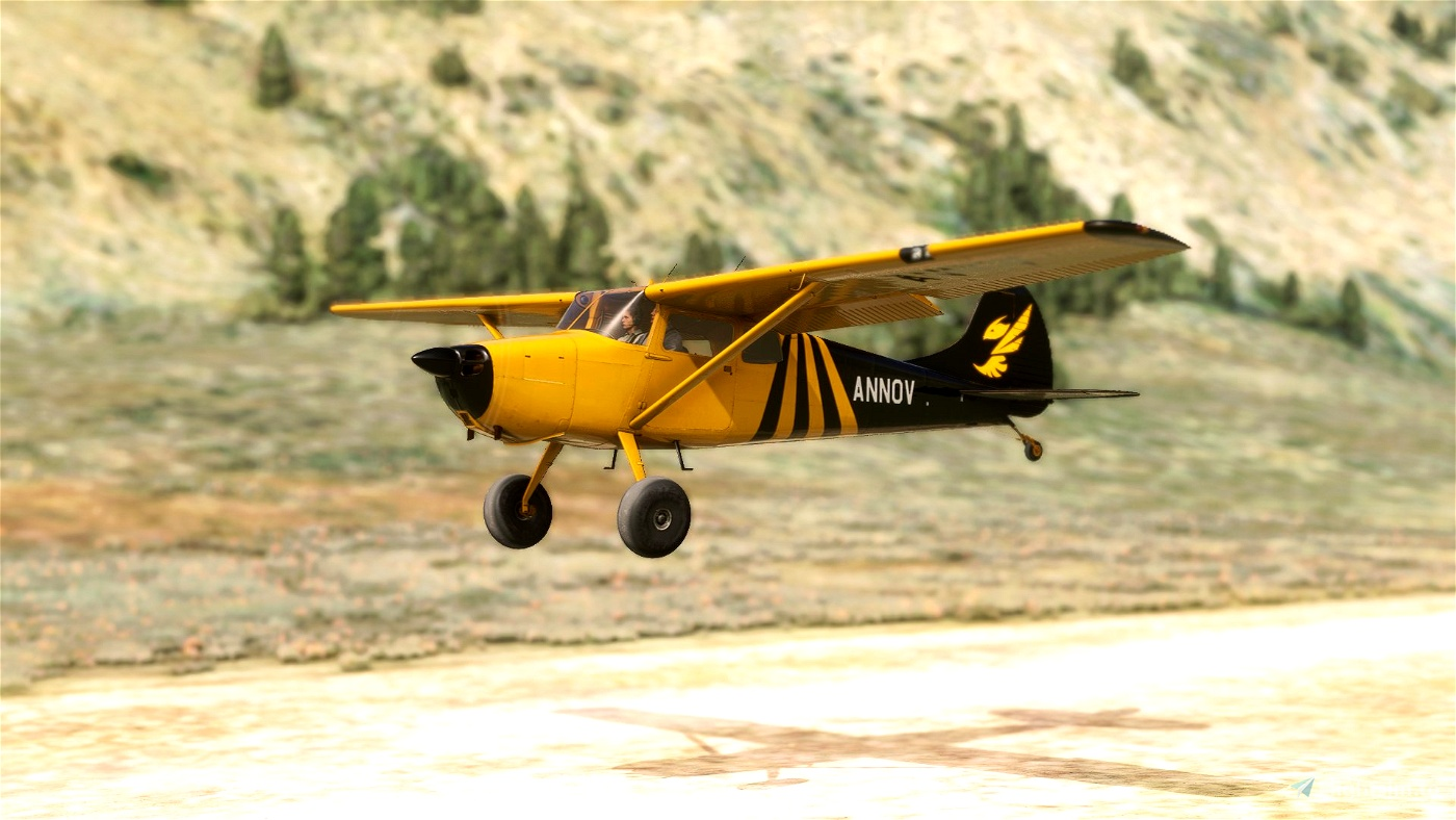 Carenado C170B Tundra Hornet