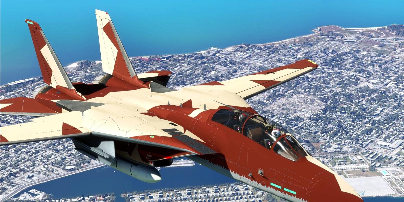 """""""F-14 """"Thief Of Baghdad"""" VF 24"""