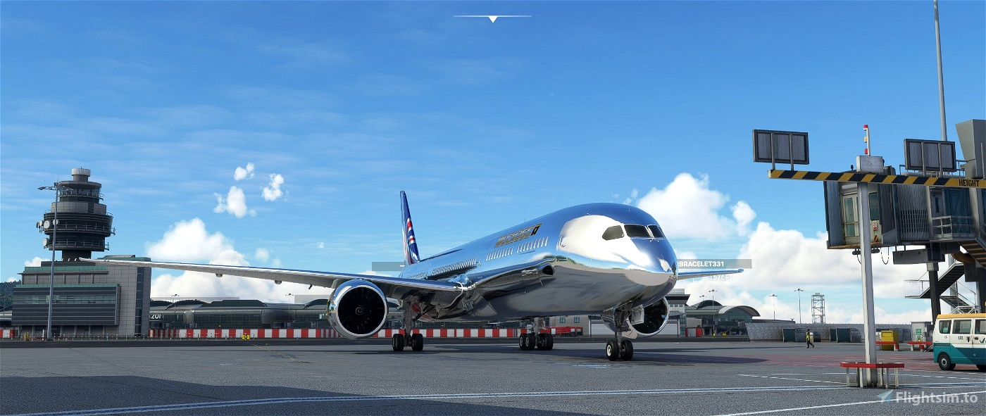 B787 MUCKA66'S CHROME LIVERY(REQUESTED LIVERY)