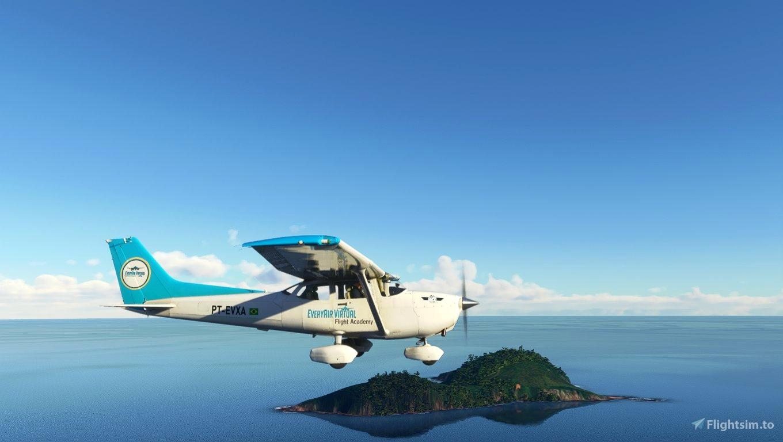 Cessna 172 Classic Everyair Flight Academy